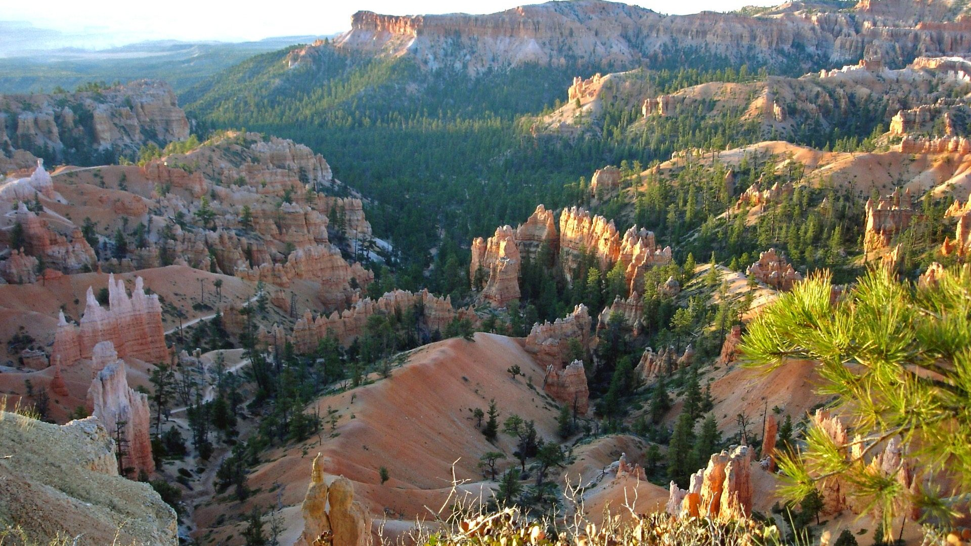 bryce canyon national park lesbian personals Welcome to laura miller and craig mcgowan's wedding website  we continued dating,  zion national park, bryce canyon national park, .